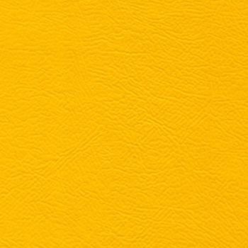 Bright Yellow BC-006